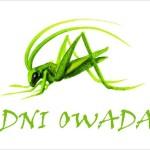 Dni Owada – najciekawsze sytuacje i teksty