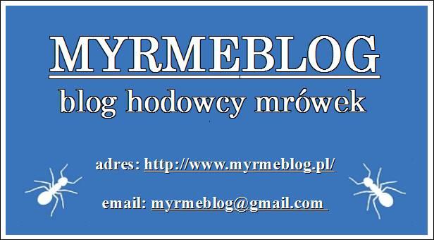Myrmeblog