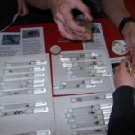 Zajęcia z mrówkami w przedszkolu