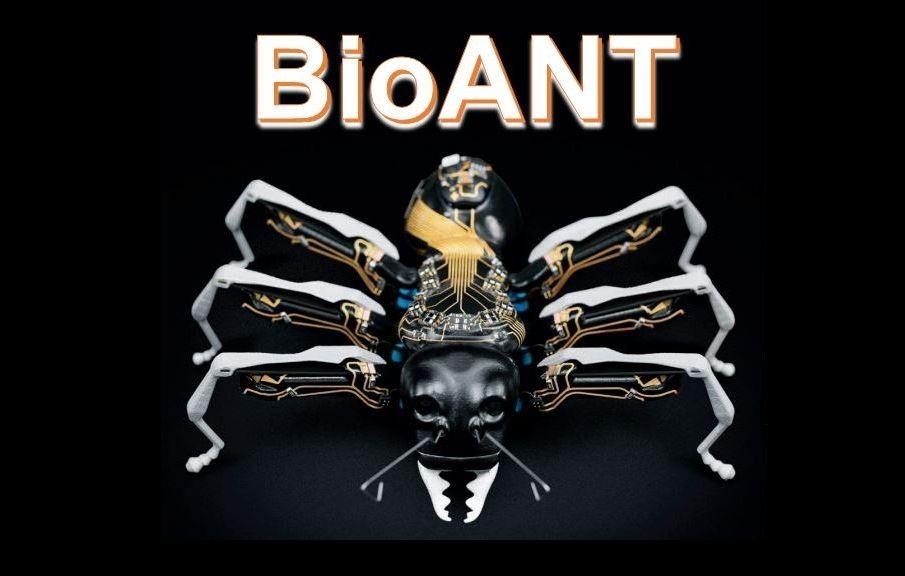 Innowacyjne mrówki - BioANTs