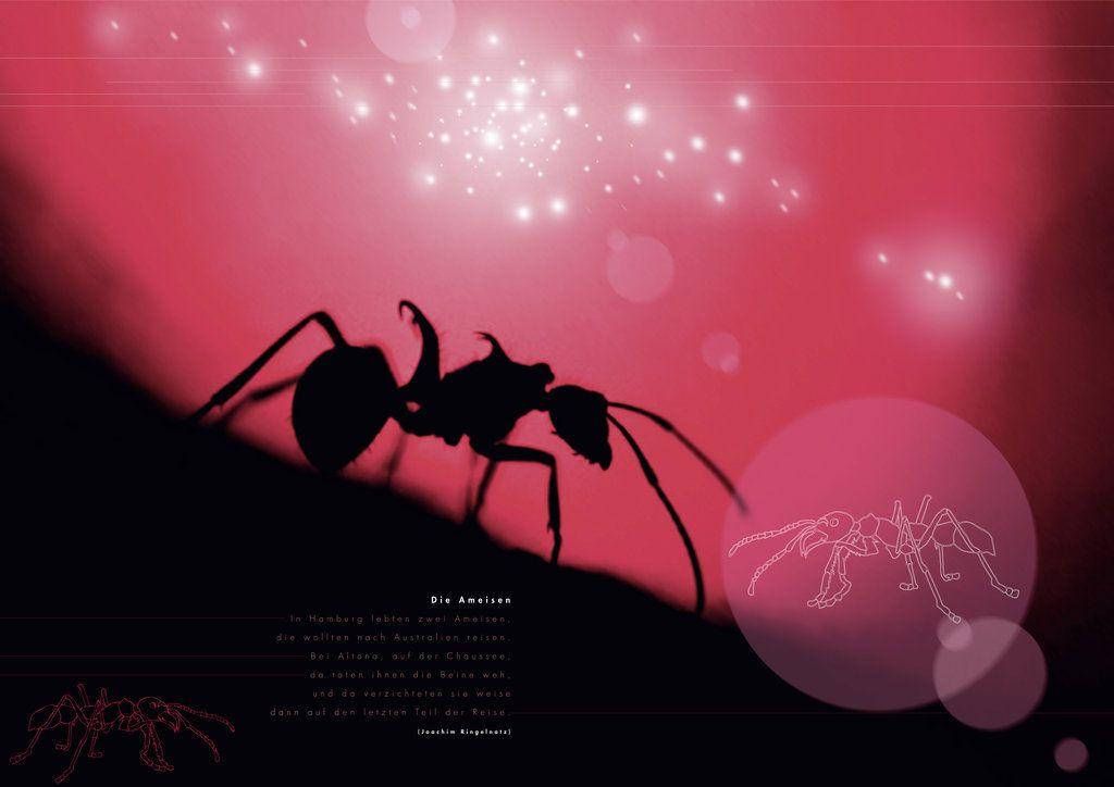 Mrówki-roboty w kosmosie