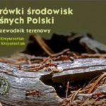 Mrówki środowisk leśnych Polski