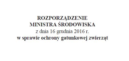 Ochrona gatunkowa mrówek w Polsce