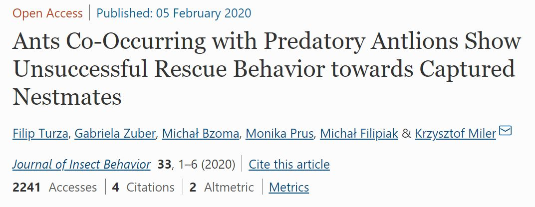 Ants Co-Occurring with Predatory Antlions Show Unsuccessful Rescue Behavior towards Captured Nestmates