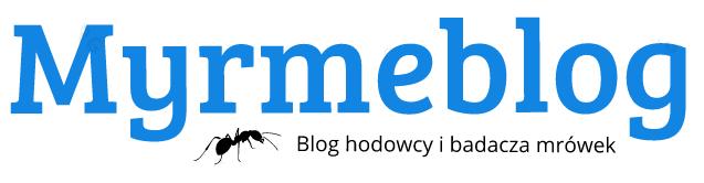Myrmeblog - blog hodowcy i badacza mrówek